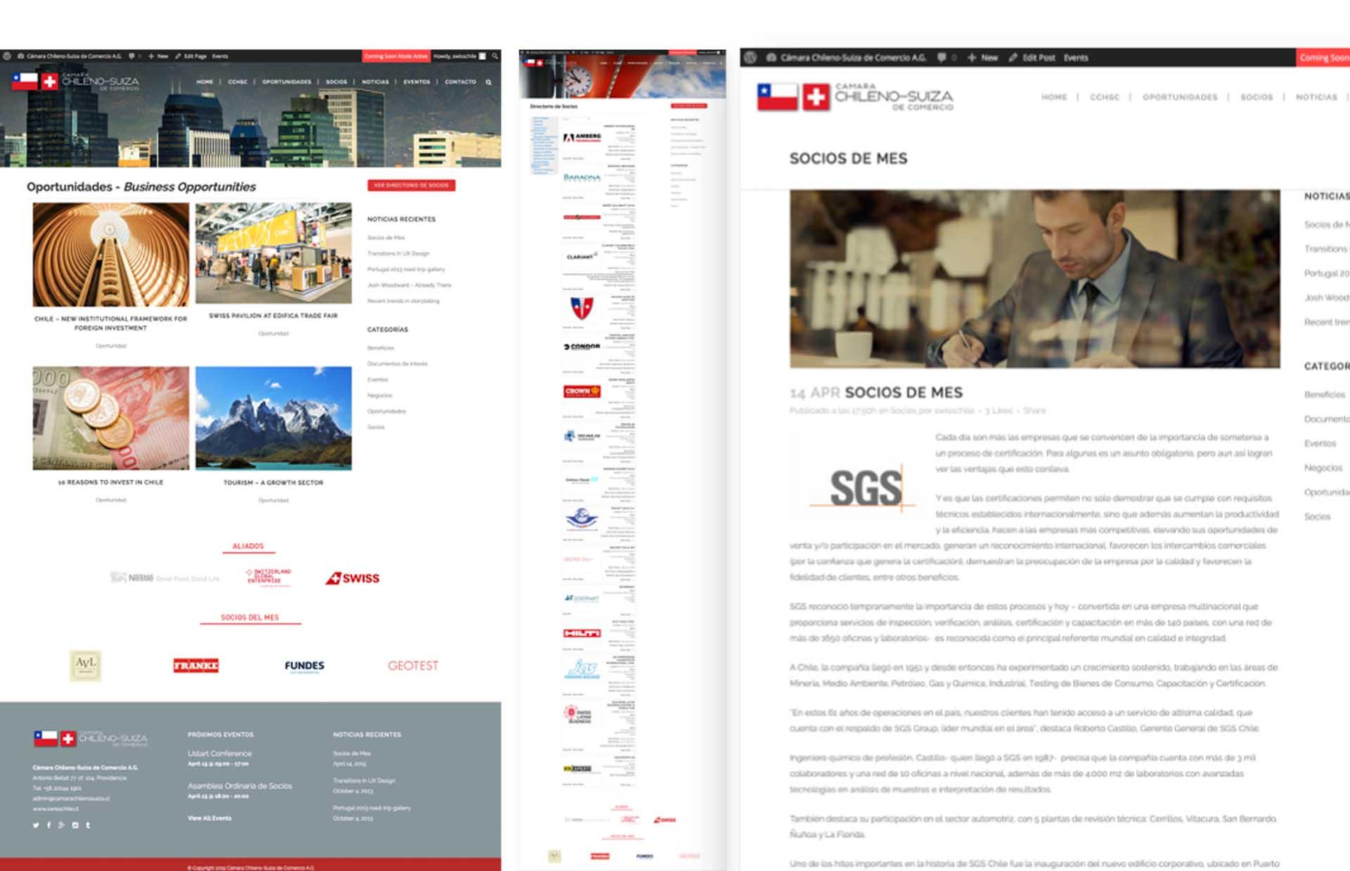 Cámara Chilena Suiza de Comercio: Diseño y administración de contenido web